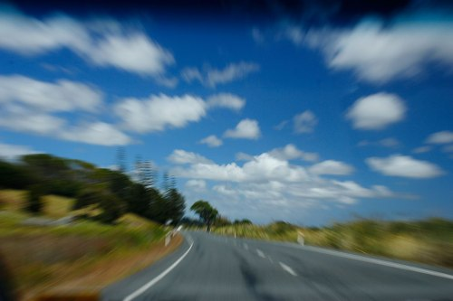 driving near dargaville